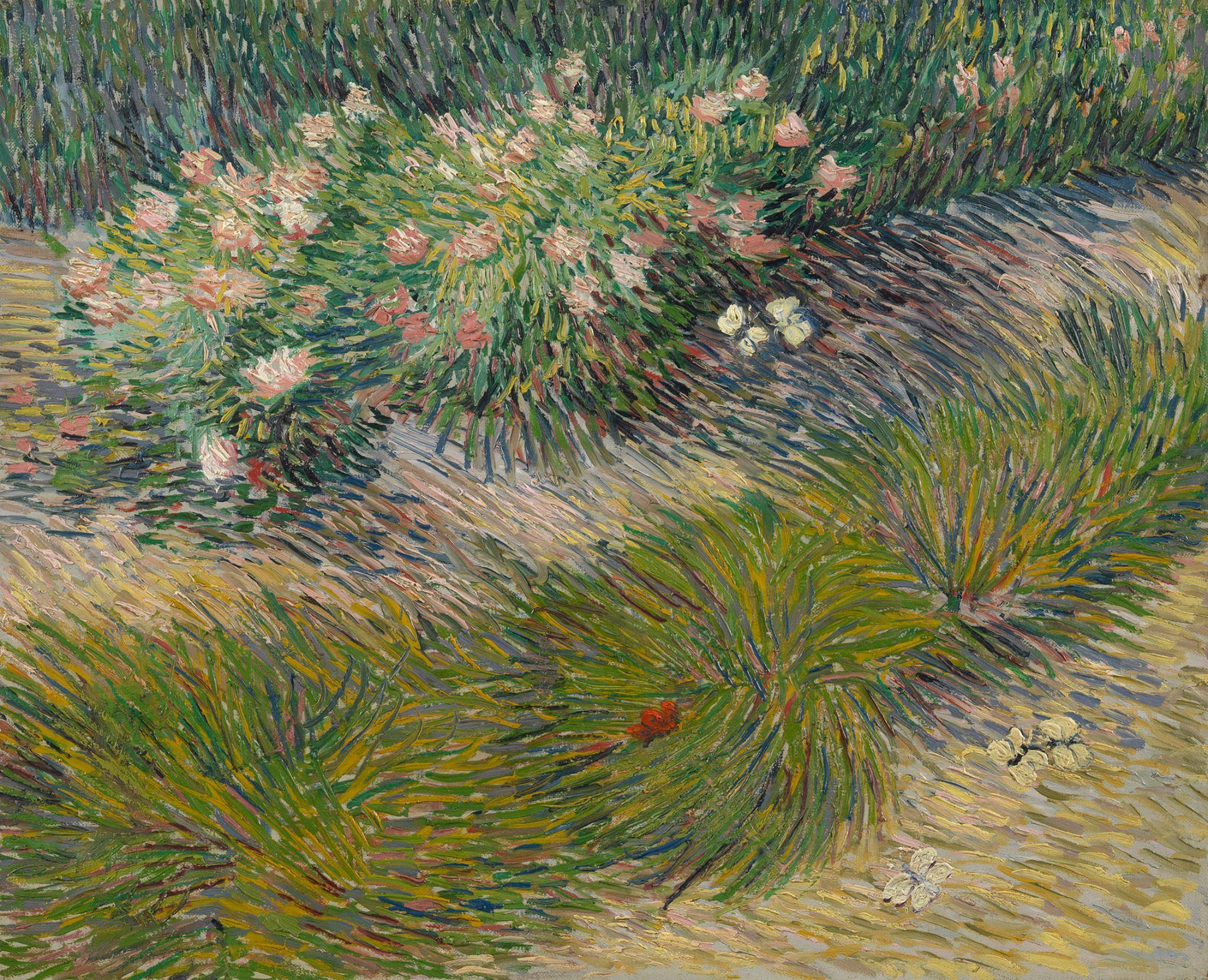 Coin de jardin avec papillons , Vincent Van Gogh, 1887