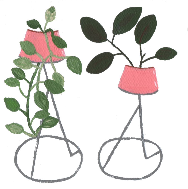Pink Planters.jpg