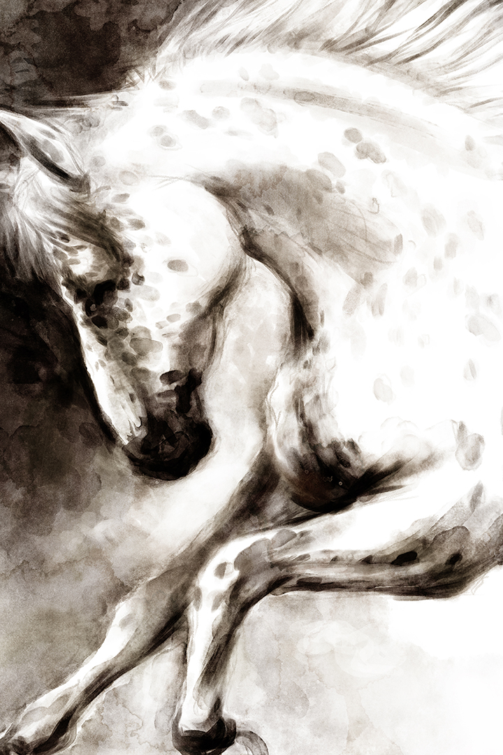 CAG124505_HorseWatercolor_24x36_SW_KL.jpg