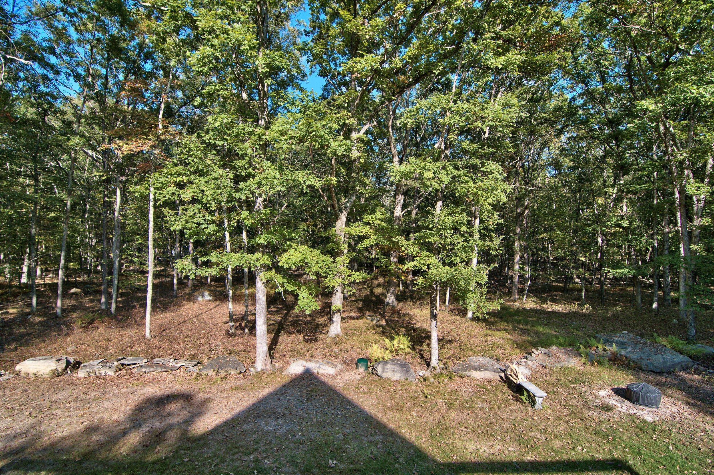 Exterior View 15.jpg