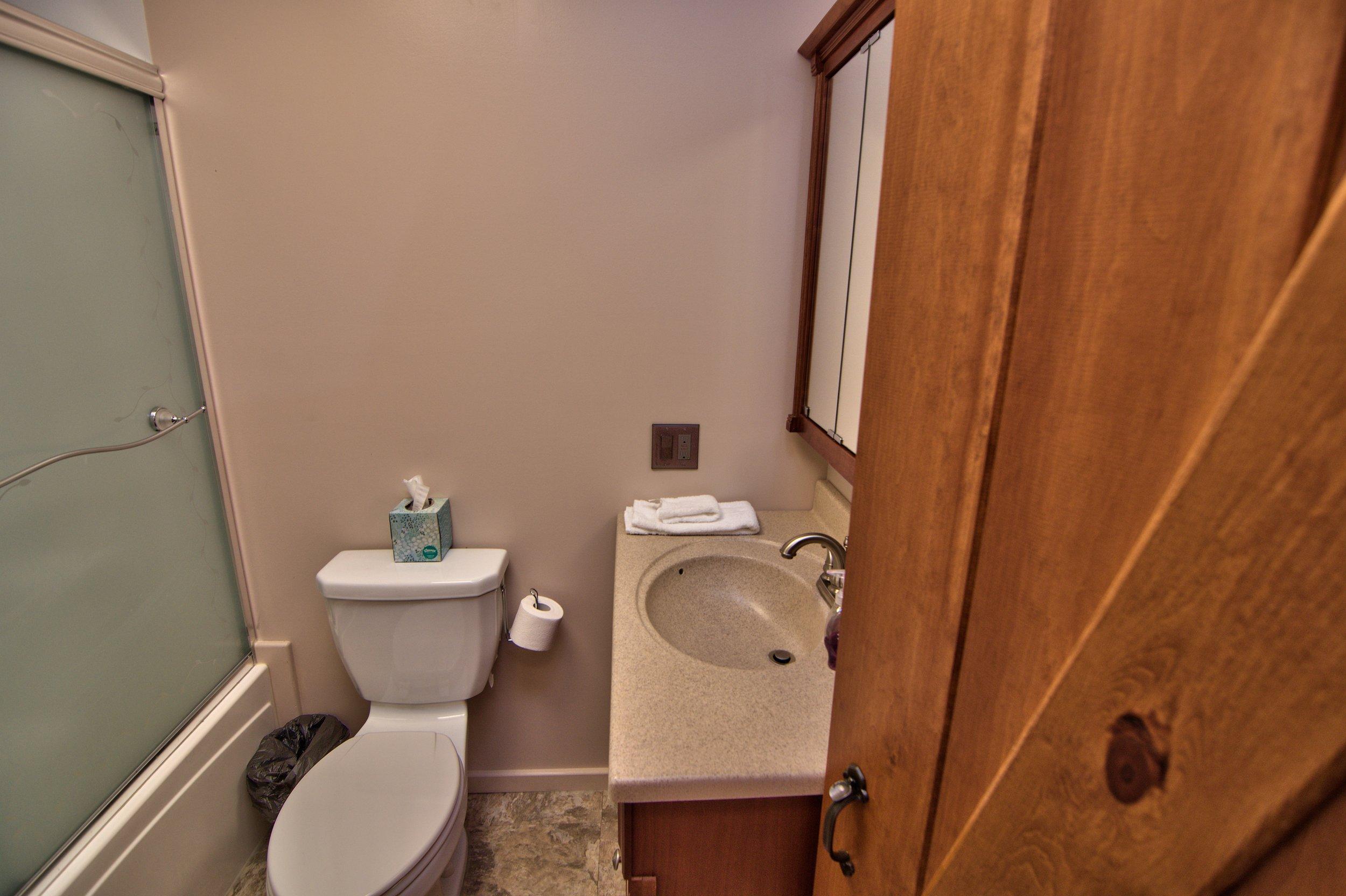 Hall Bath View 3.jpg
