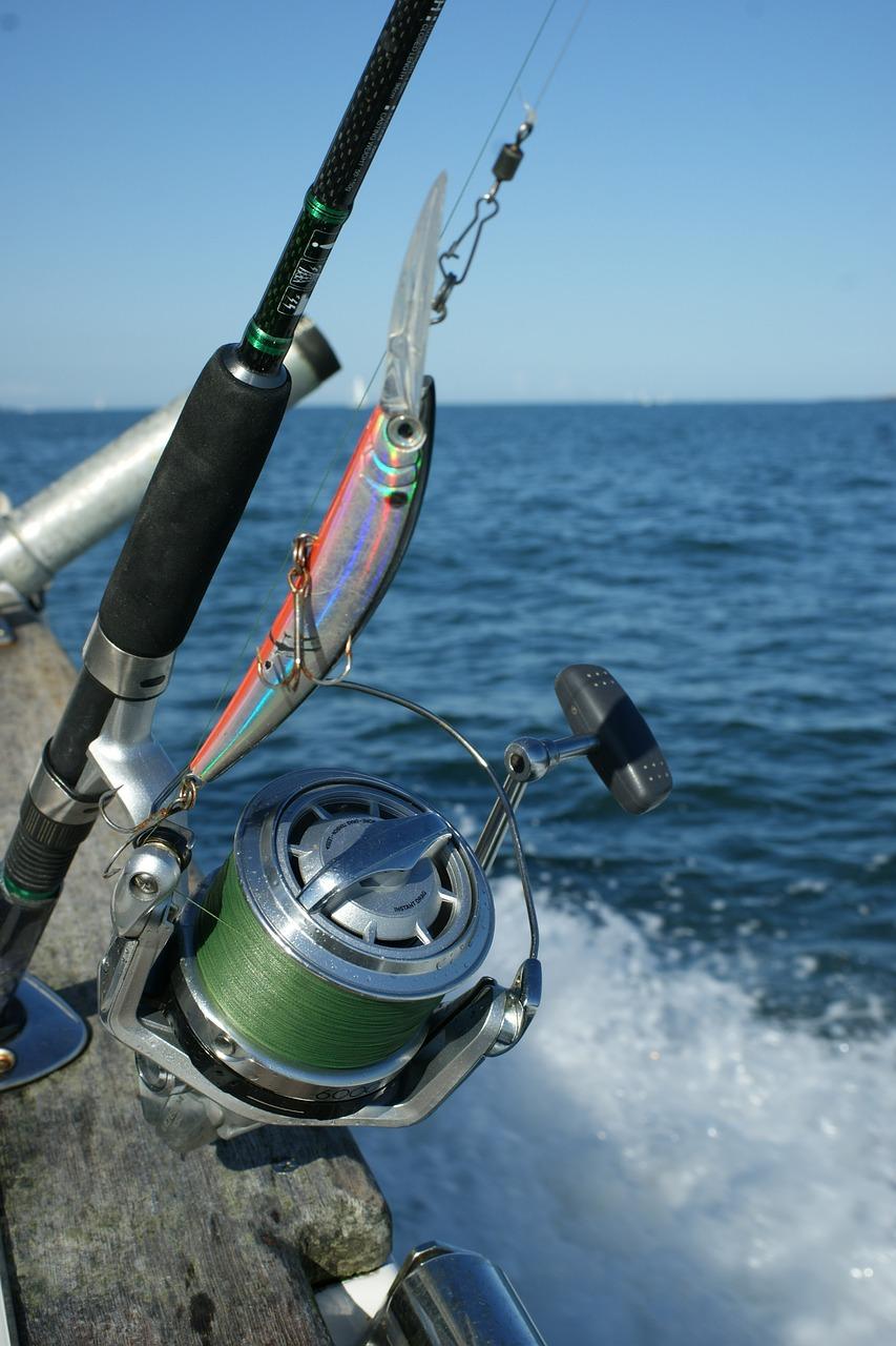 fishing-1753465_1280.jpg