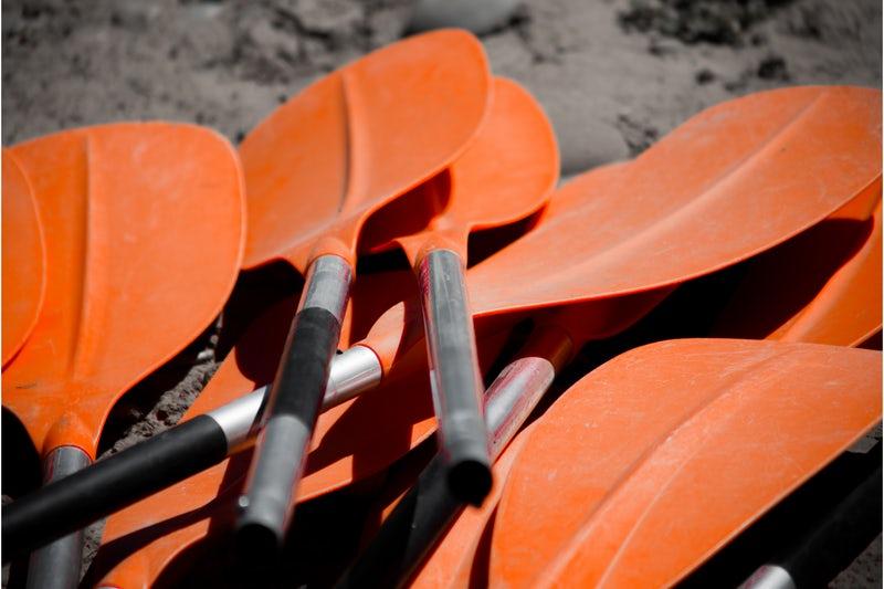 canoe-oars