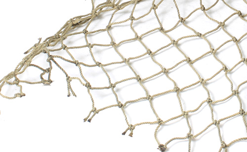 fish in a net.jpg