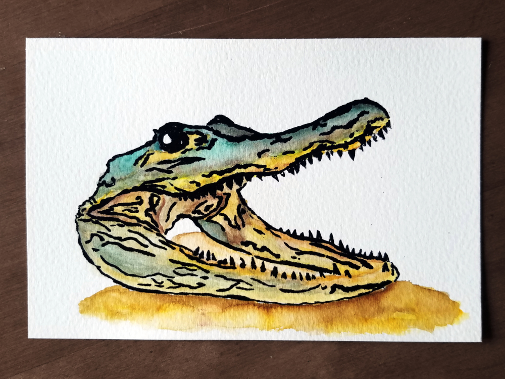 !4Embossed Gator Watercolor.jpg