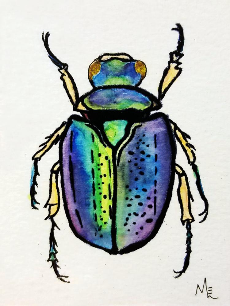 !4embossed jewel beetle watercolor.jpg