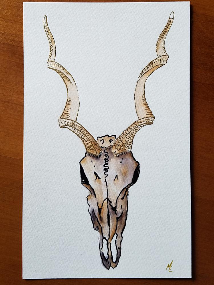 !4Embossed Kudu Skull Watercolor-750x1000.jpg