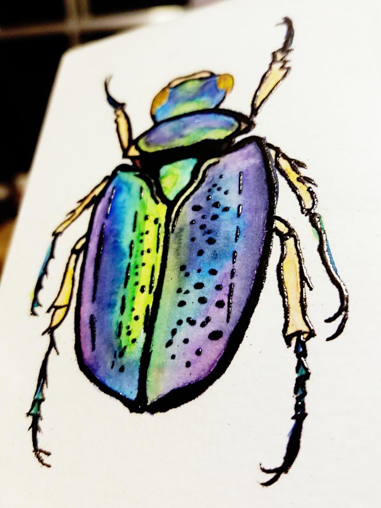 !4embossed jewel beetle watercolor2.jpg