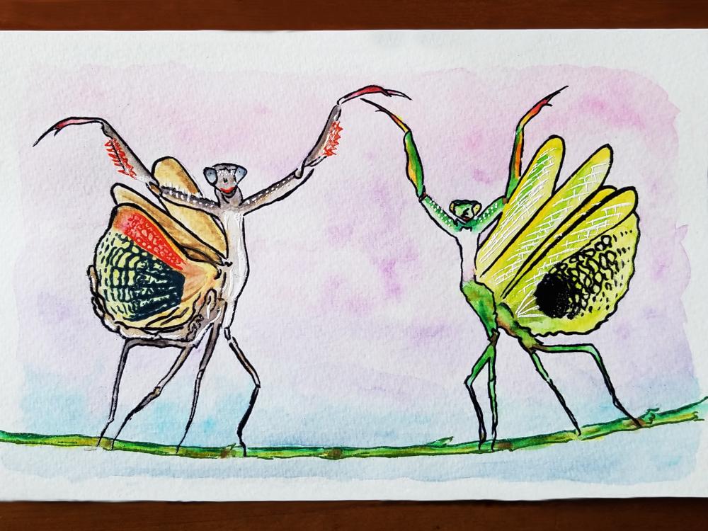 !4embossed mantis watercolor1.jpg
