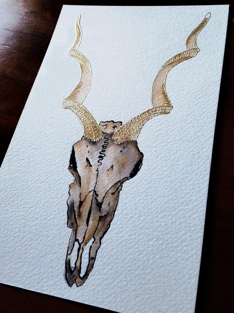 !4Micha Lessard-Embossed Kudu Skull Watercolor.jpg