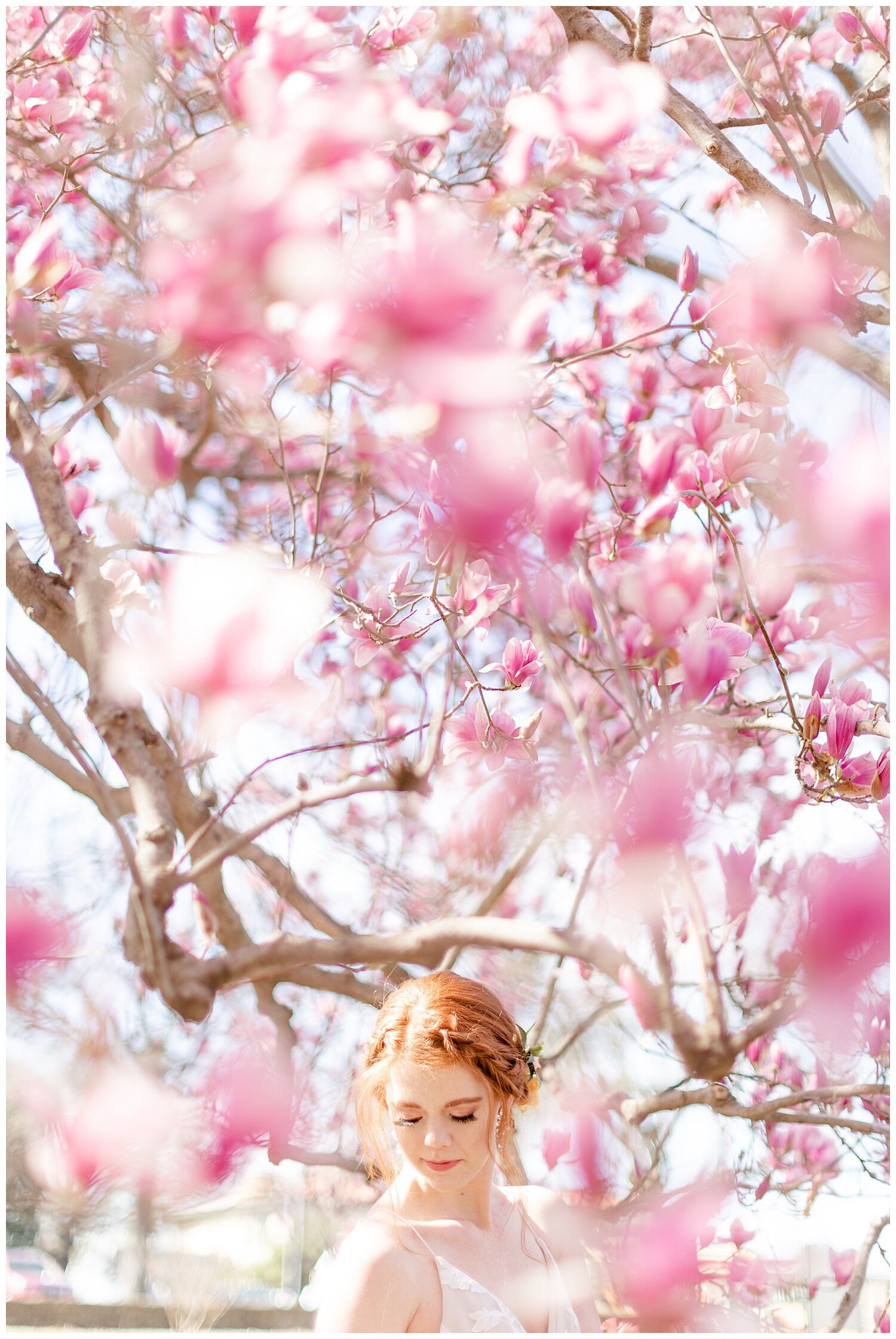 tulip tree bridal pictures