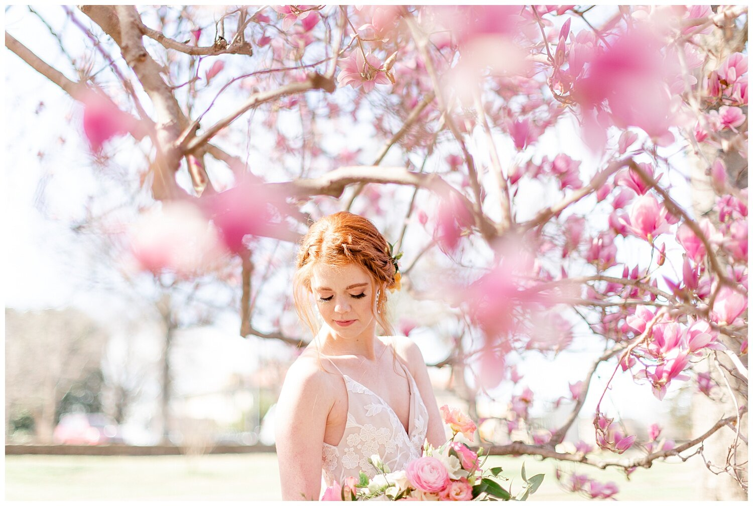 tulip tree wedding pictures