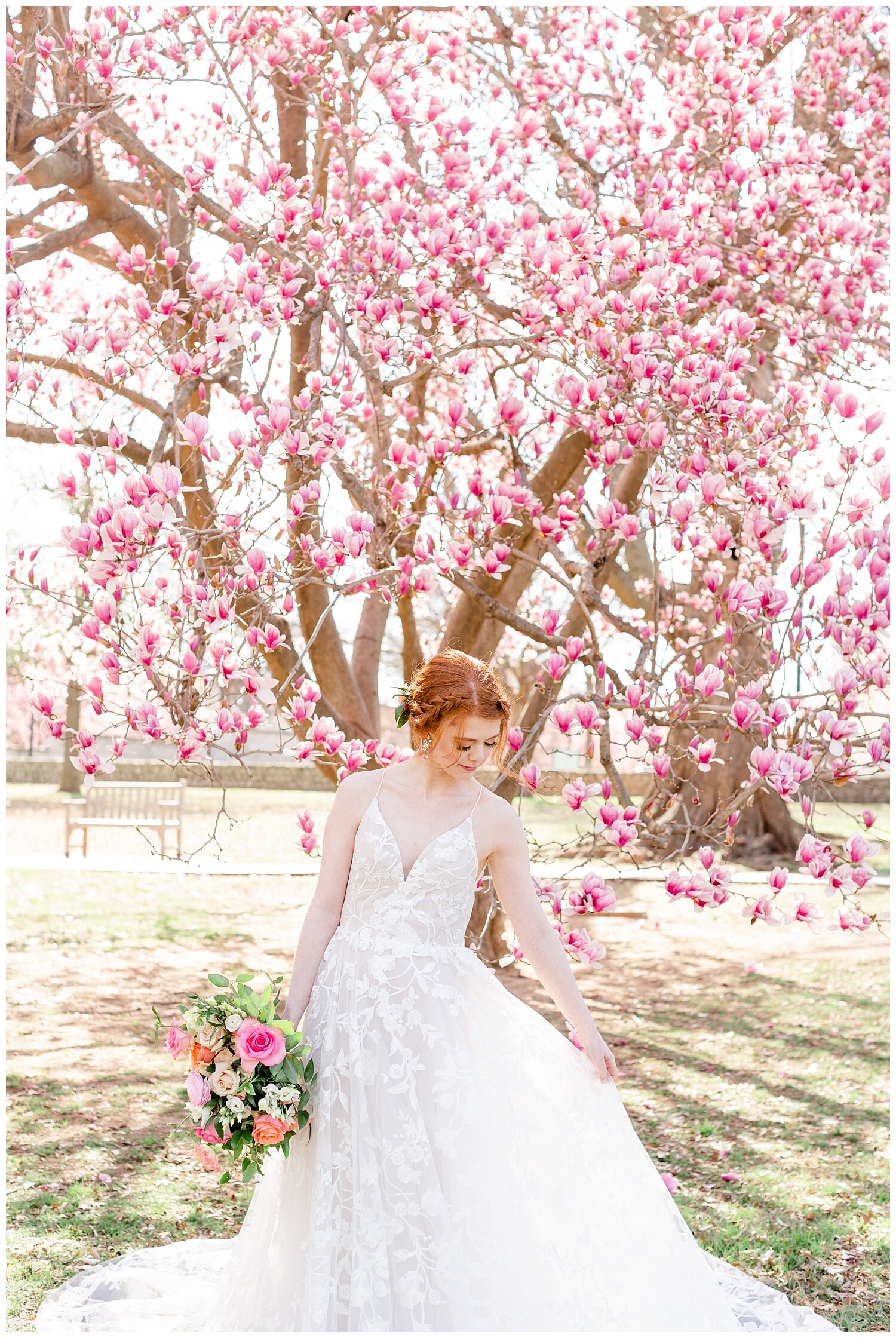 spring tulip tree wedding pictures
