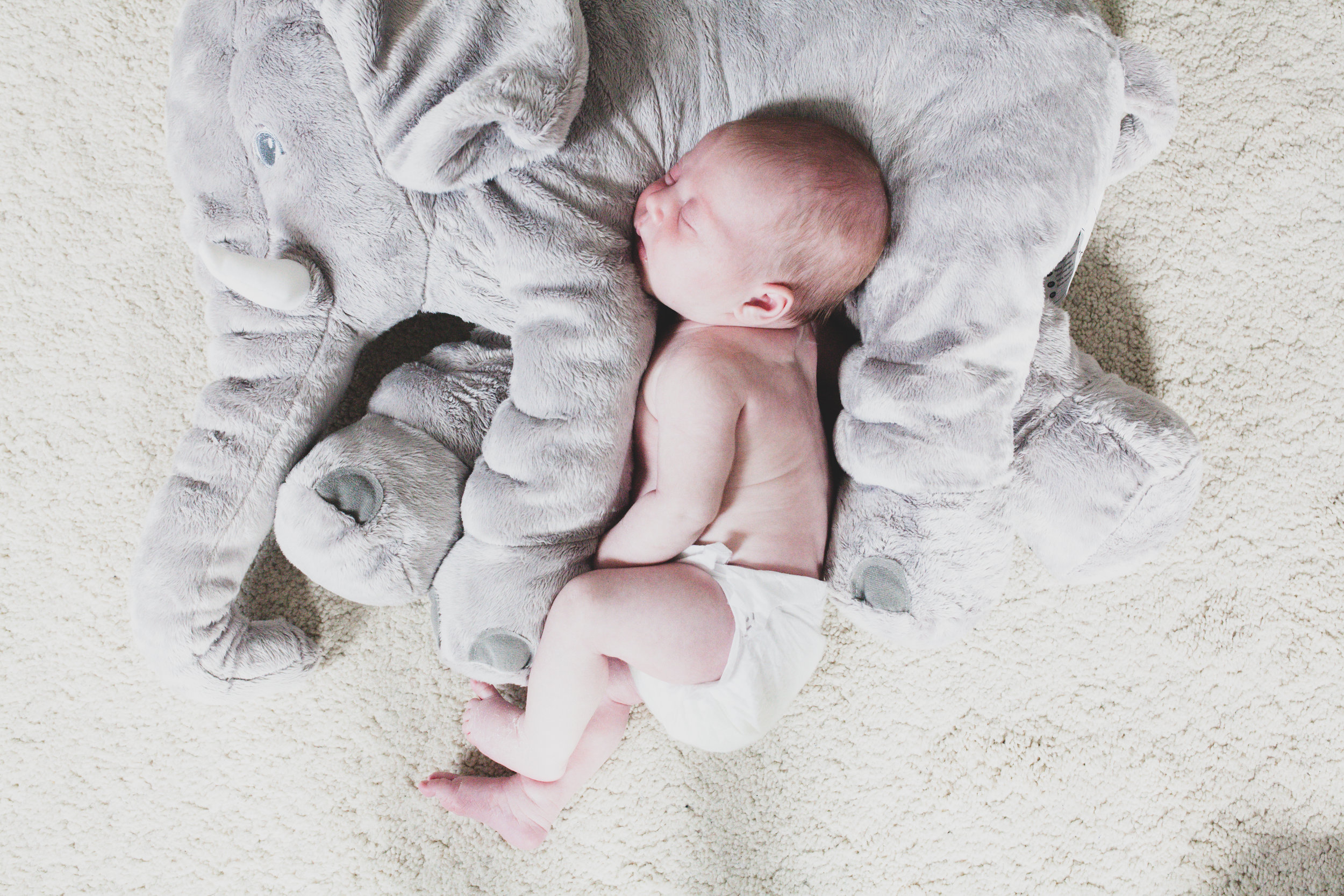 Baby Eliza-55.jpg