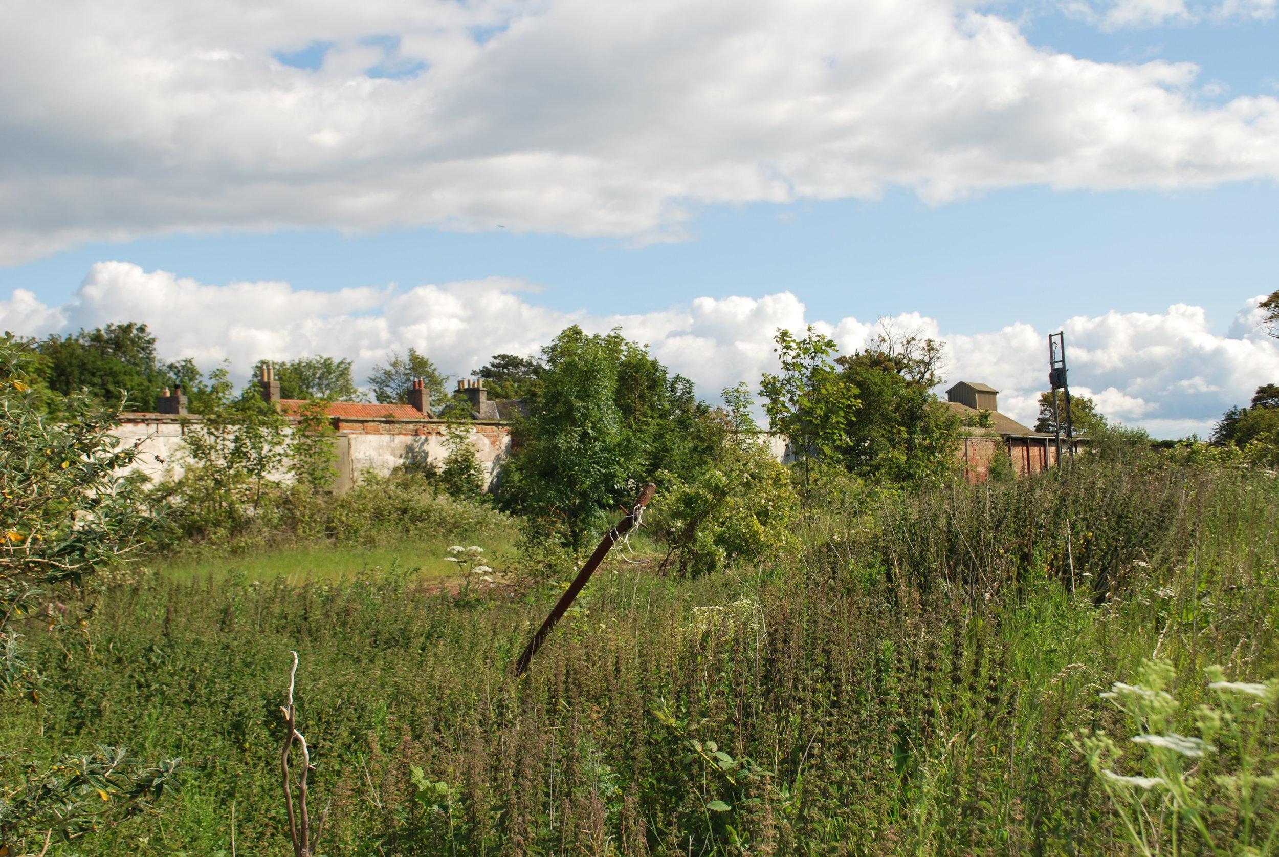 Archerfield Walled Garden 090.jpg
