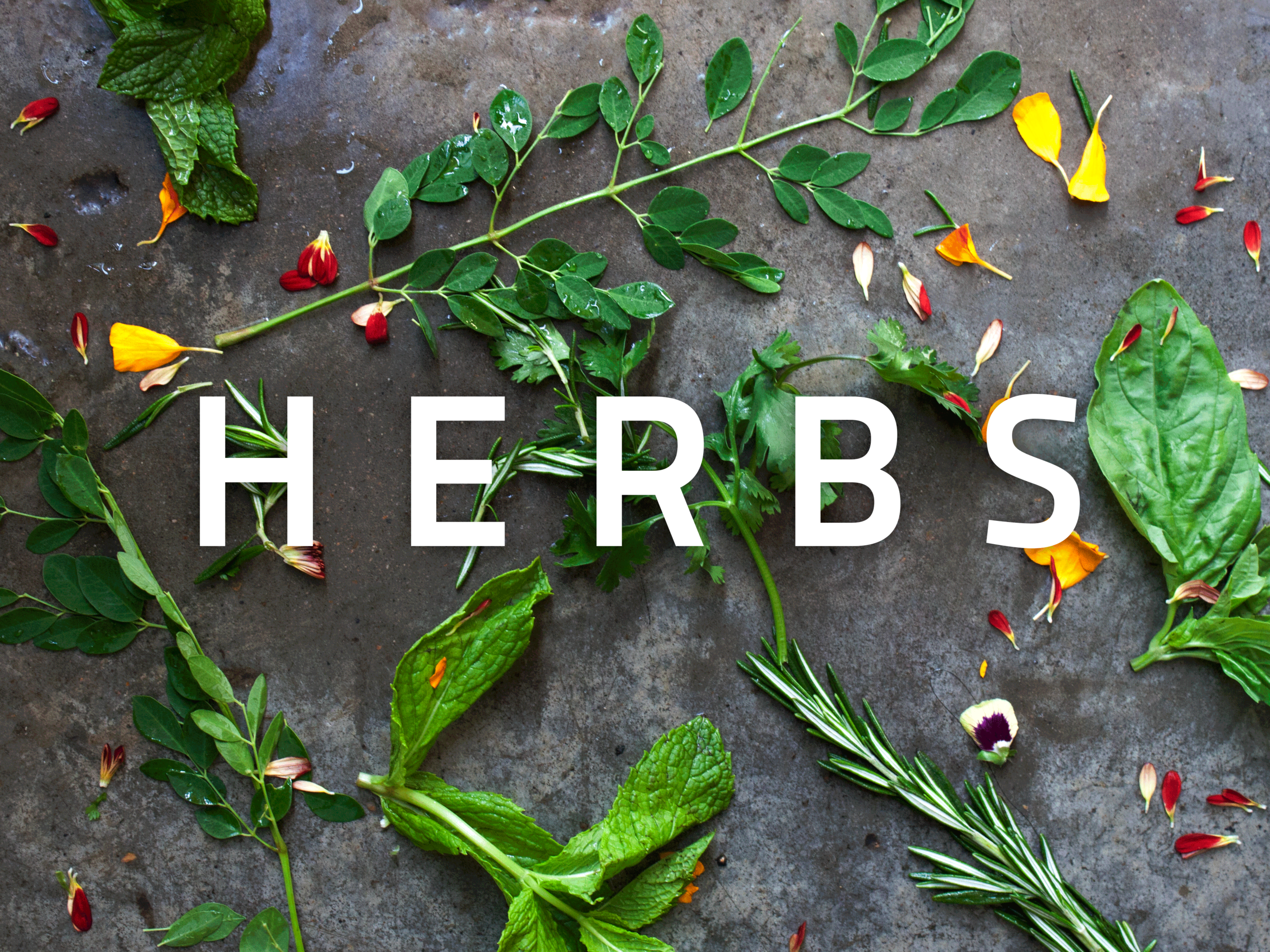 herbs-2.png