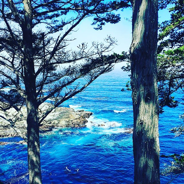 Color Inspiration!! It is nearly impossible to describe the cool, blue of the Pacific near Carmel, CA.