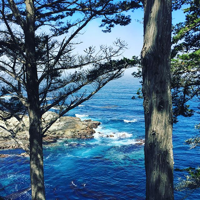 Color Inspiration!! It is nearly impossible to describe the cool blue of the Pacific near Carmel, CA.