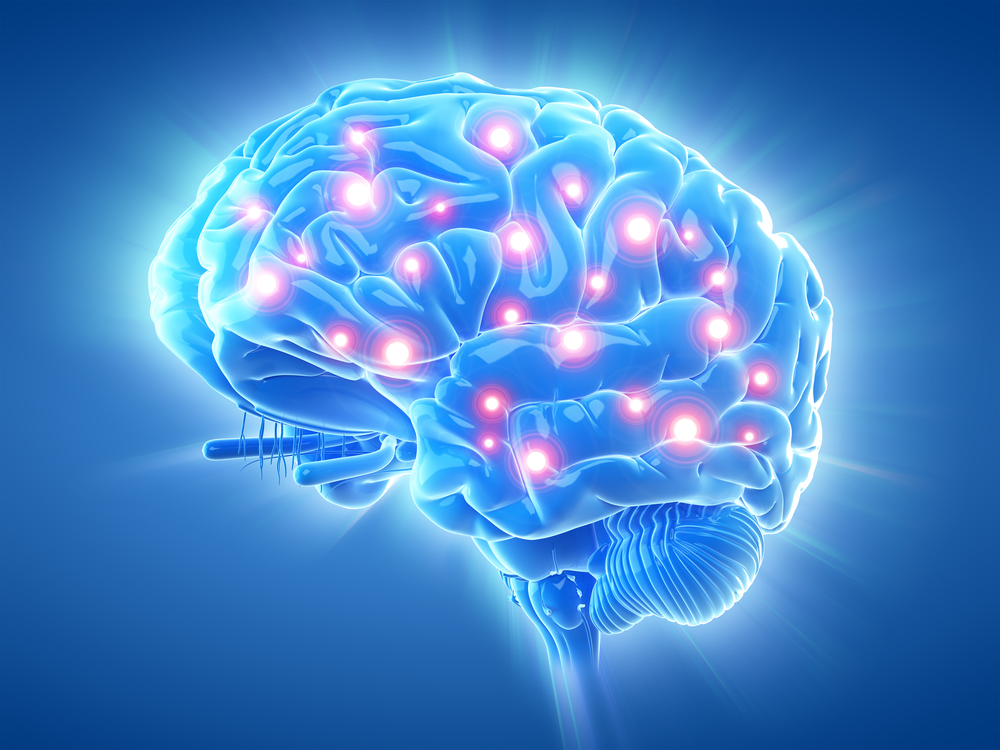 Active Brain.jpg