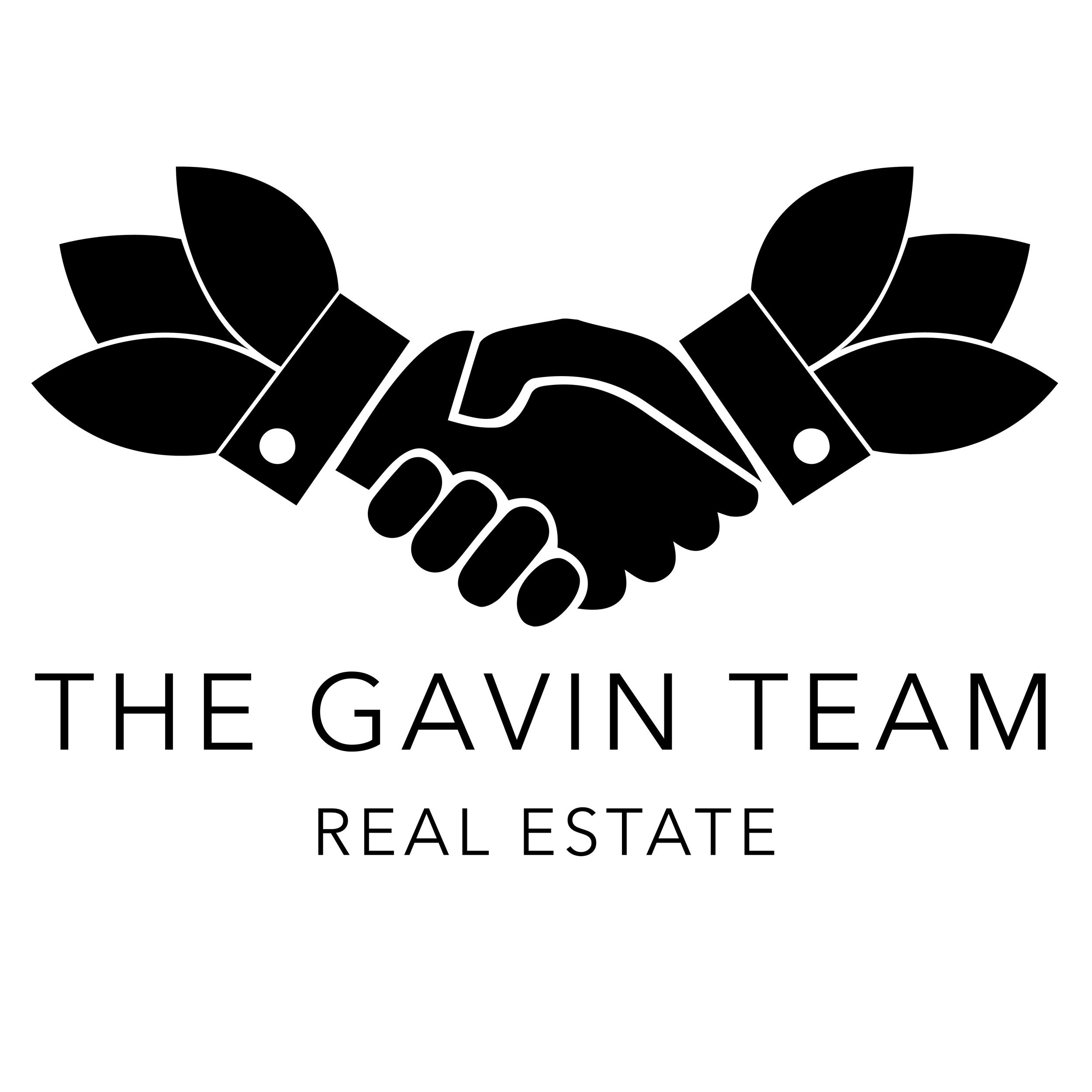 Timg Gavin Logo NEW2.png