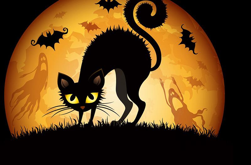 Halloween009