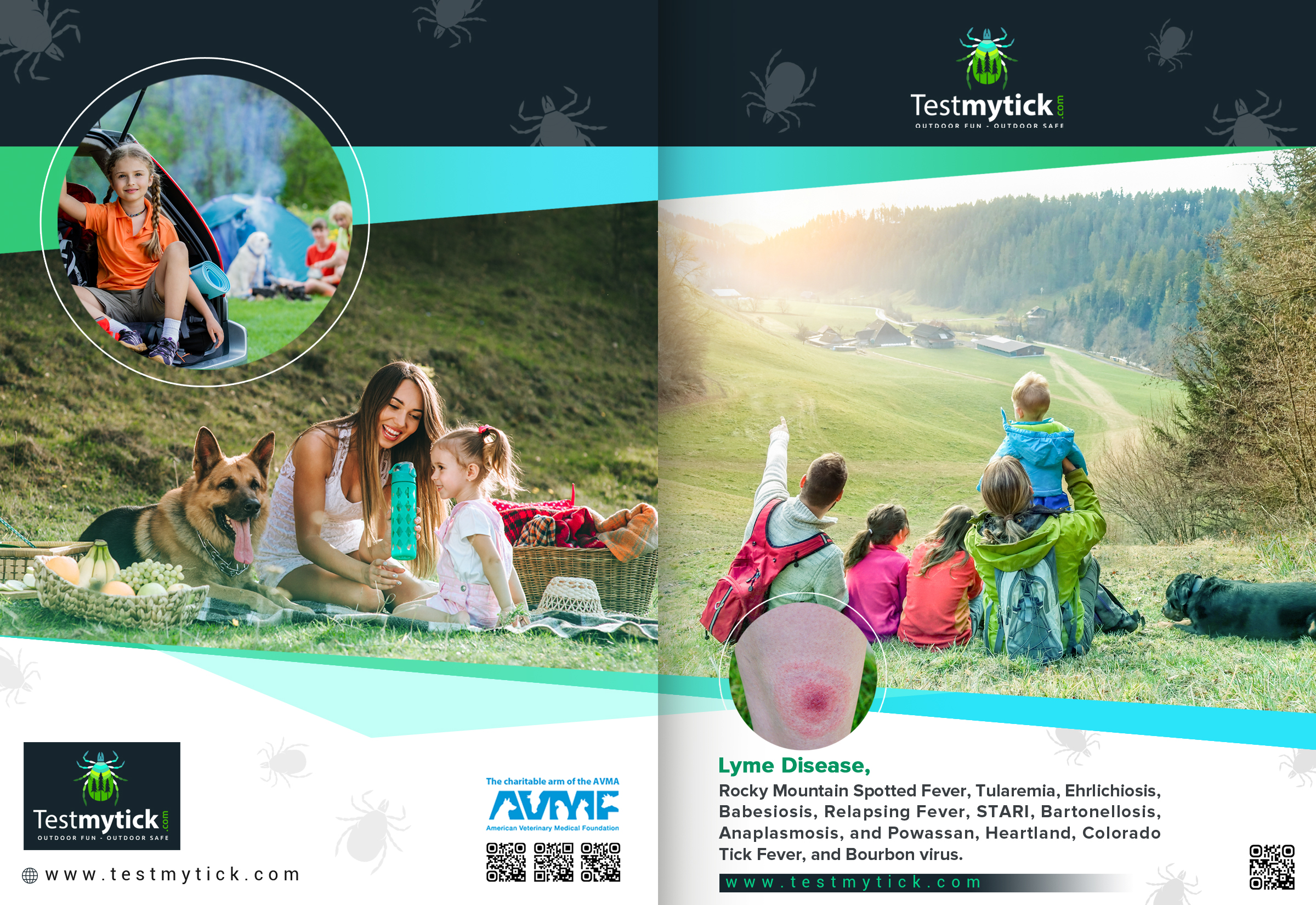 Tick Disease and Testing_Brochure_Front_150617.jpg