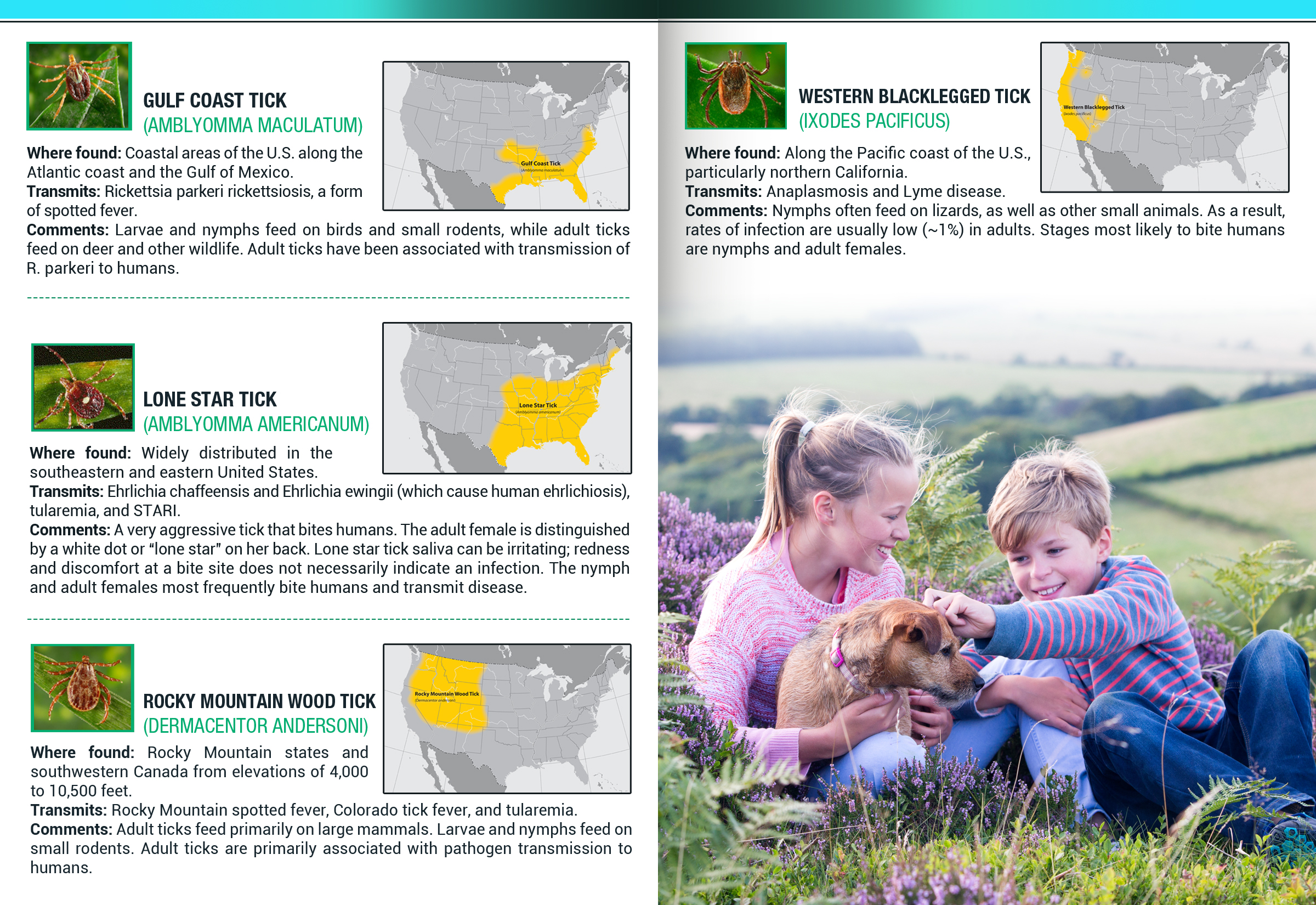 Tick Disease and Testing_Brochure_Inside_6_150617.jpg