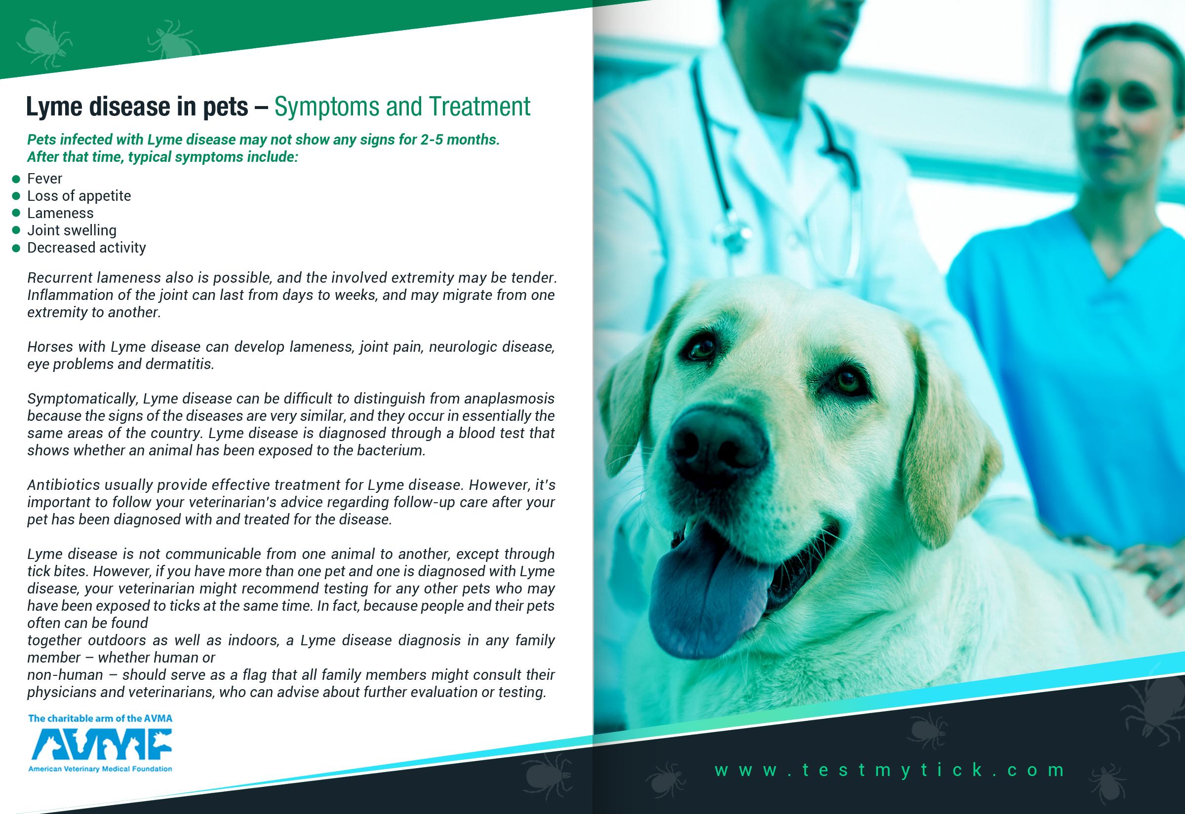 Tick Disease and Testing_Brochure_Inside_8_150617.jpg