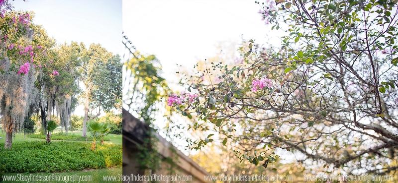 Carothers Coastal Gardens Seabrook Tx Wedding Photographer (4)