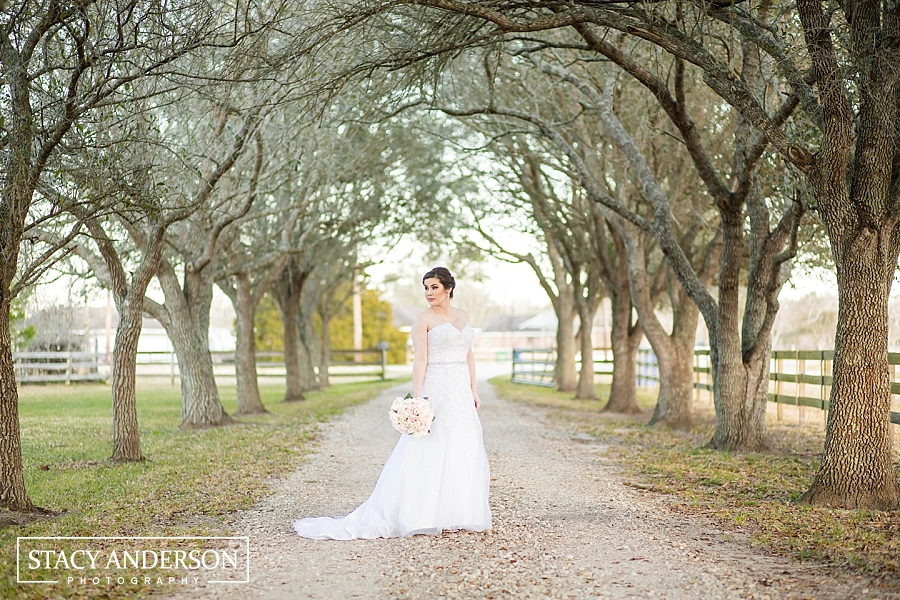 Stacy Anderson Photography Little G Farm_1058