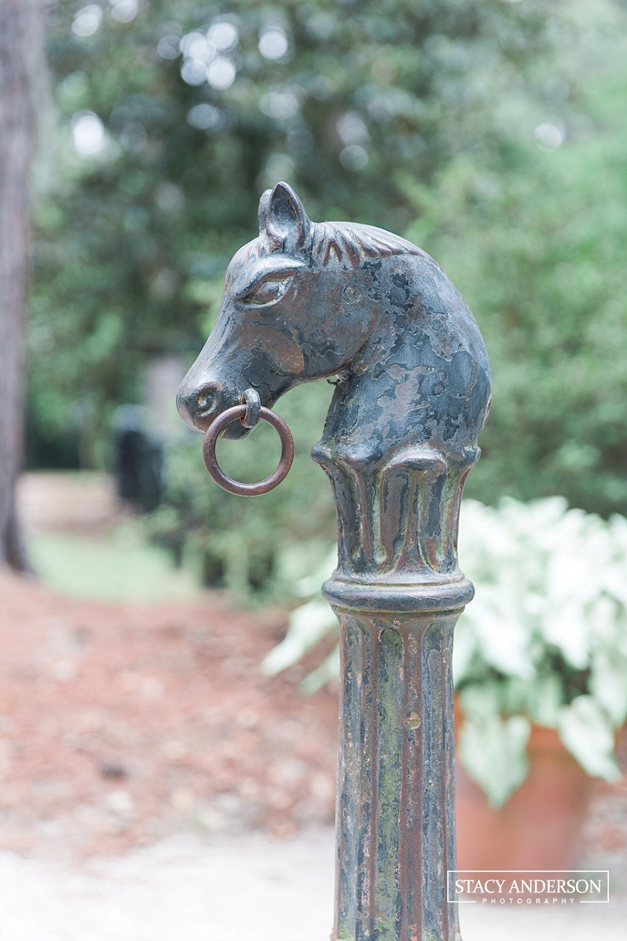 Stacy Anderson Photography Charleston Destination Wedding Photographer_1524
