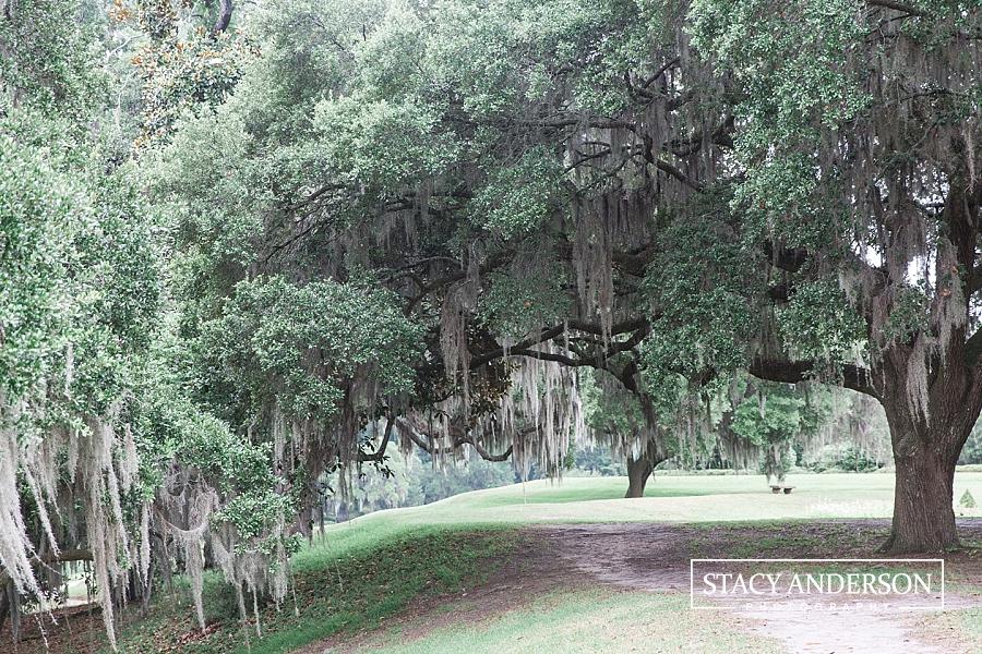 Stacy Anderson Photography Charleston Destination Wedding Photographer_1530
