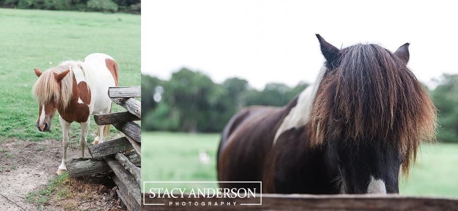Stacy Anderson Photography Charleston Destination Wedding Photographer_1566