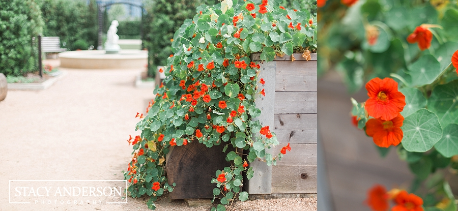 Stacy Anderson Photography Houston McGovern Centennial Gardens_1631