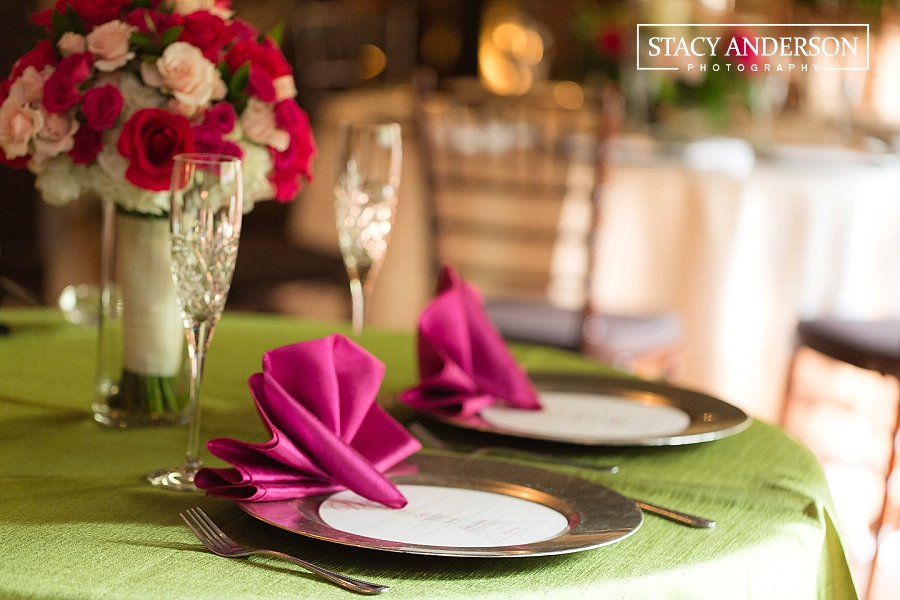 Stacy Anderson Photography Agave Road Katy TX Photographer_0151