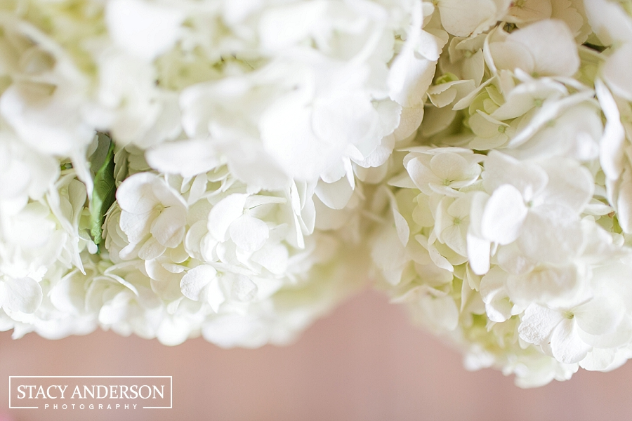 Stacy Anderson Photography George Ranch Wedding Photographer_1645