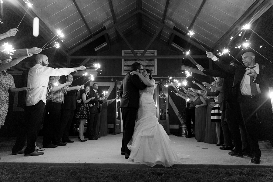 Stacy-Amderson-Photography-Houston-Fredericksberg-Wedding-Photographer_0073.jpg