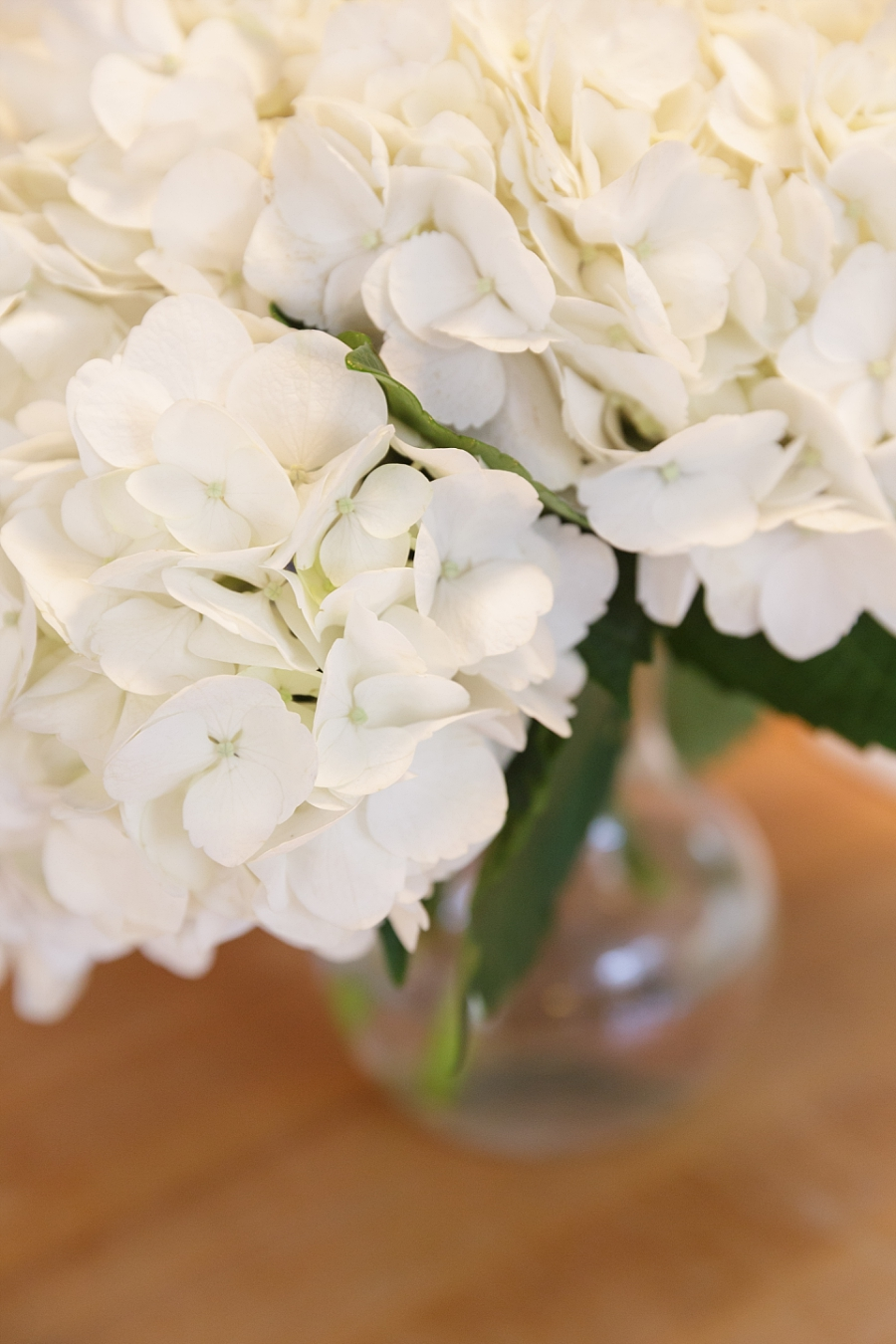 Stacy-Anderson-Photography-McGovern-Centennial-Gardens-Houston-Wedding-Photographer_0010.jpg