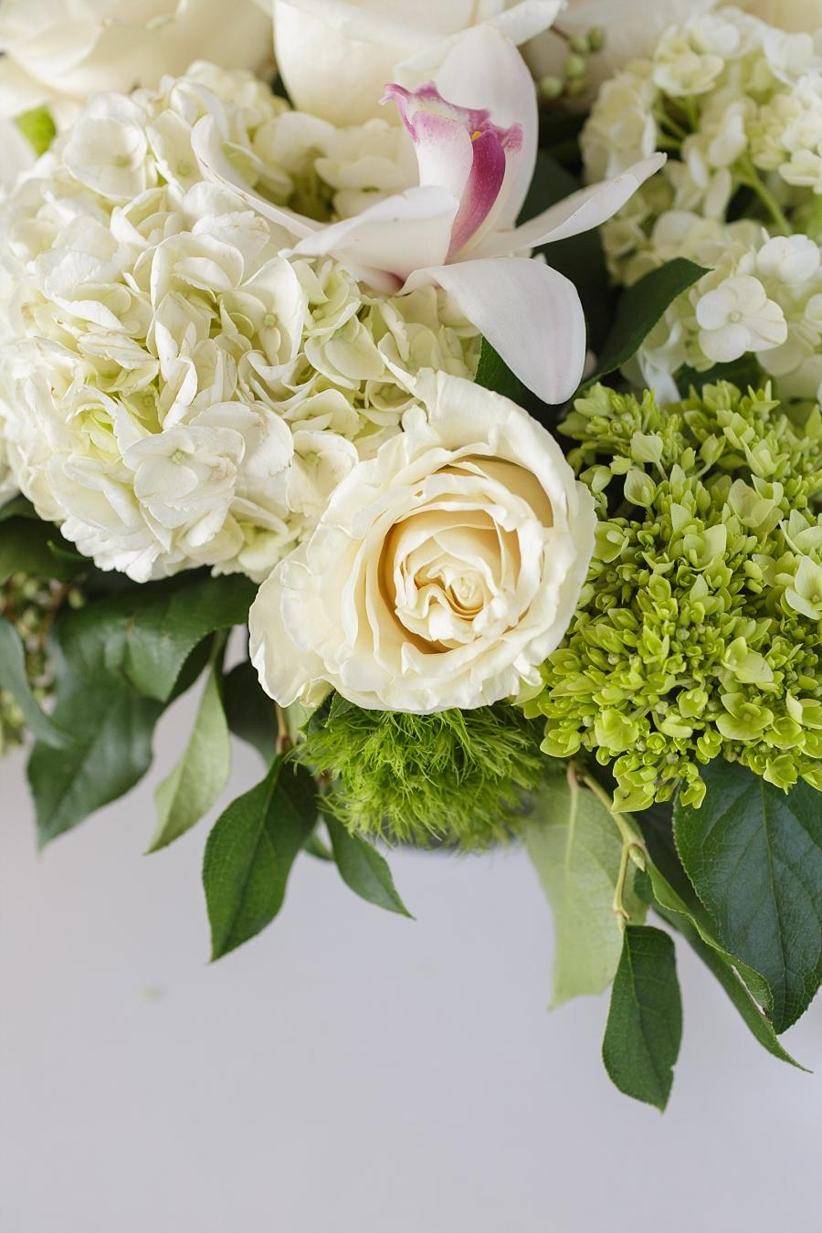 Stacy-Anderson-Photography-McGovern-Centennial-Gardens-Houston-Wedding-Photographer_0035.jpg