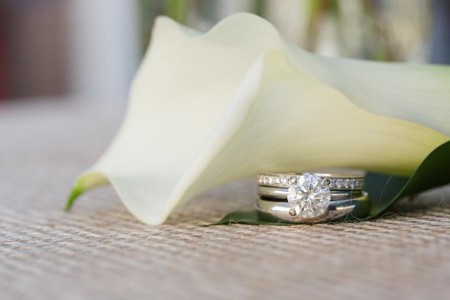 Stacy-Anderson-Photography-McGovern-Centennial-Gardens-Houston-Wedding-Photographer_0070.jpg