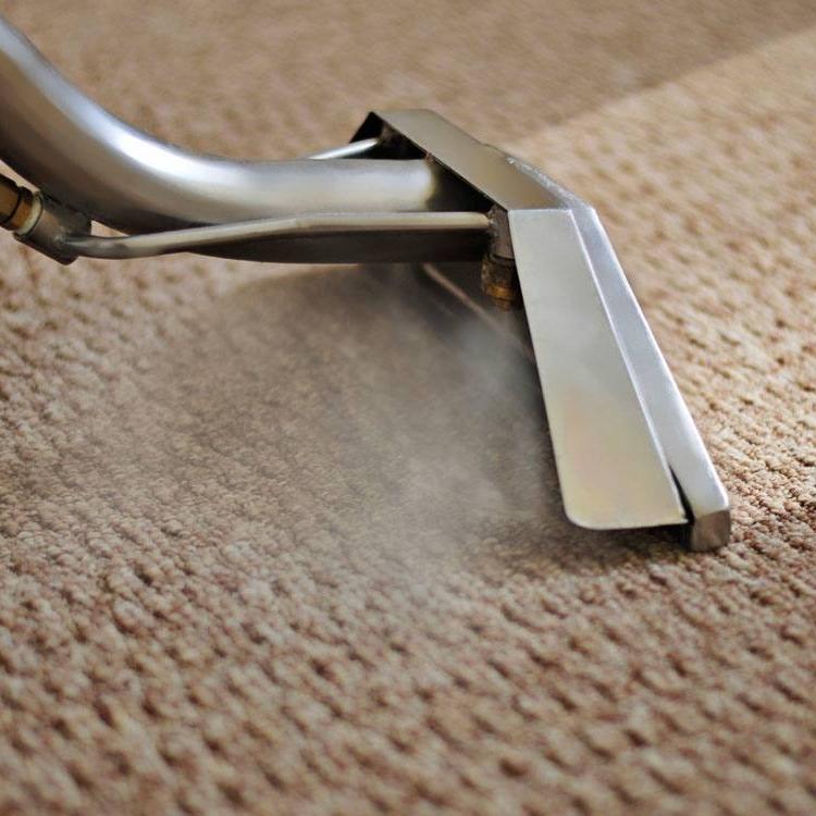 carpet-cleaning-north-coast-floor
