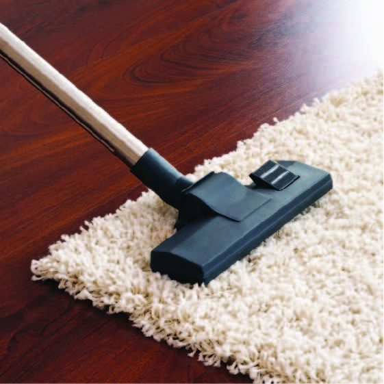 professional-carpet-cleaner-north-coast-services-.jpg