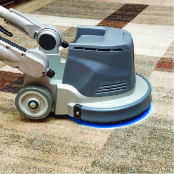 professional-carpet-cleaning-north-coast