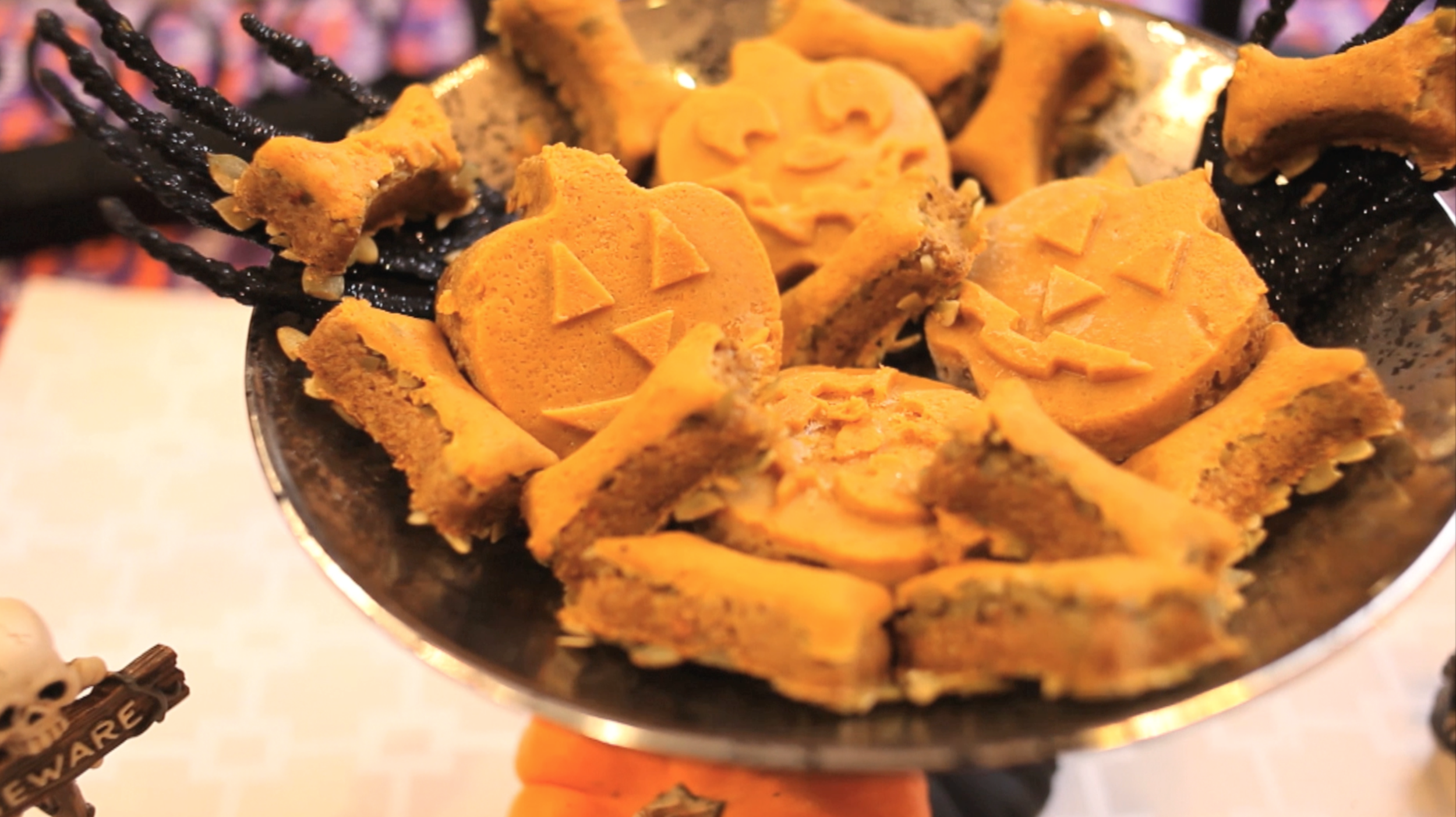 Halloween Treats that are healthy for your pets <3