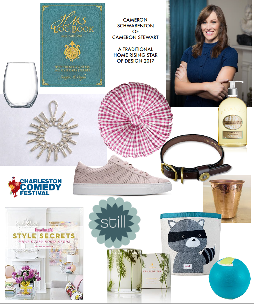 Cameron's Holiday Gift Guide.png