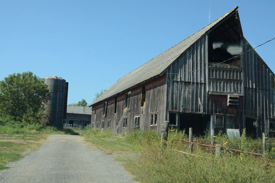 Vernon Velley Farm 9.jpg