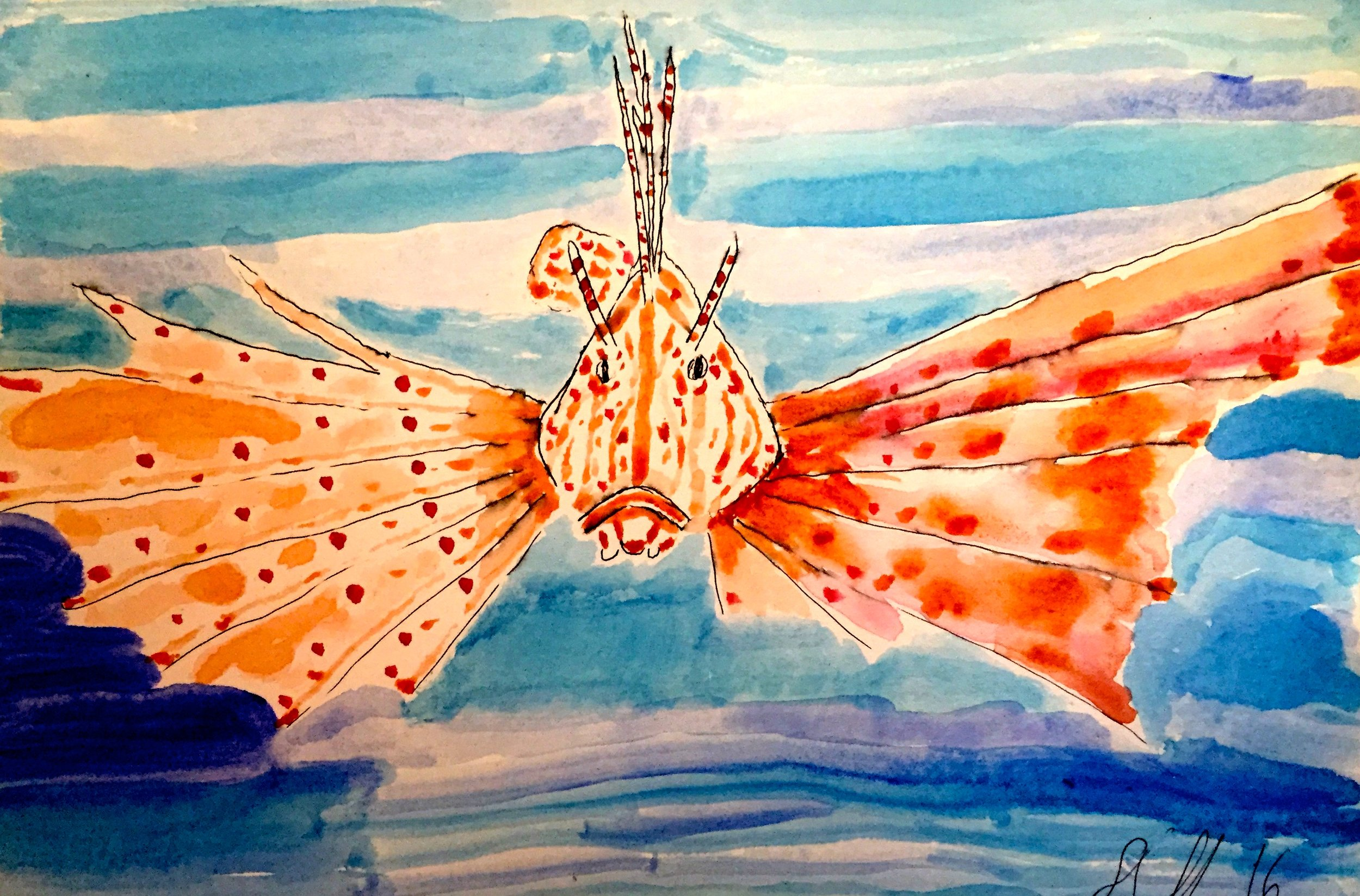 Red Lionfish ( Pterois volitans ) Stan Burnside Watercolour and Ink