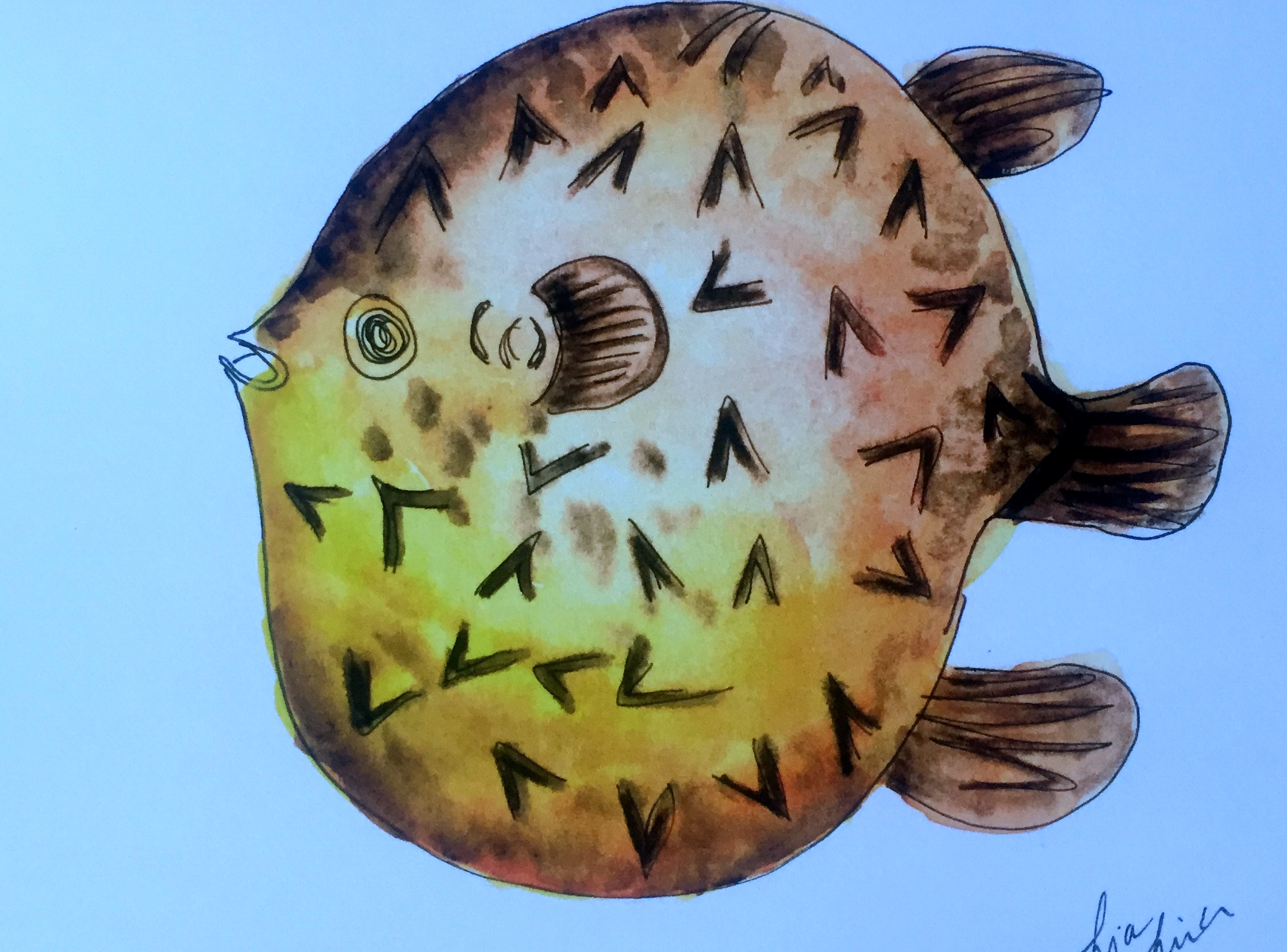 Porcupine Fish ( Diodon Hystrix )  Lia Cary Watercolour