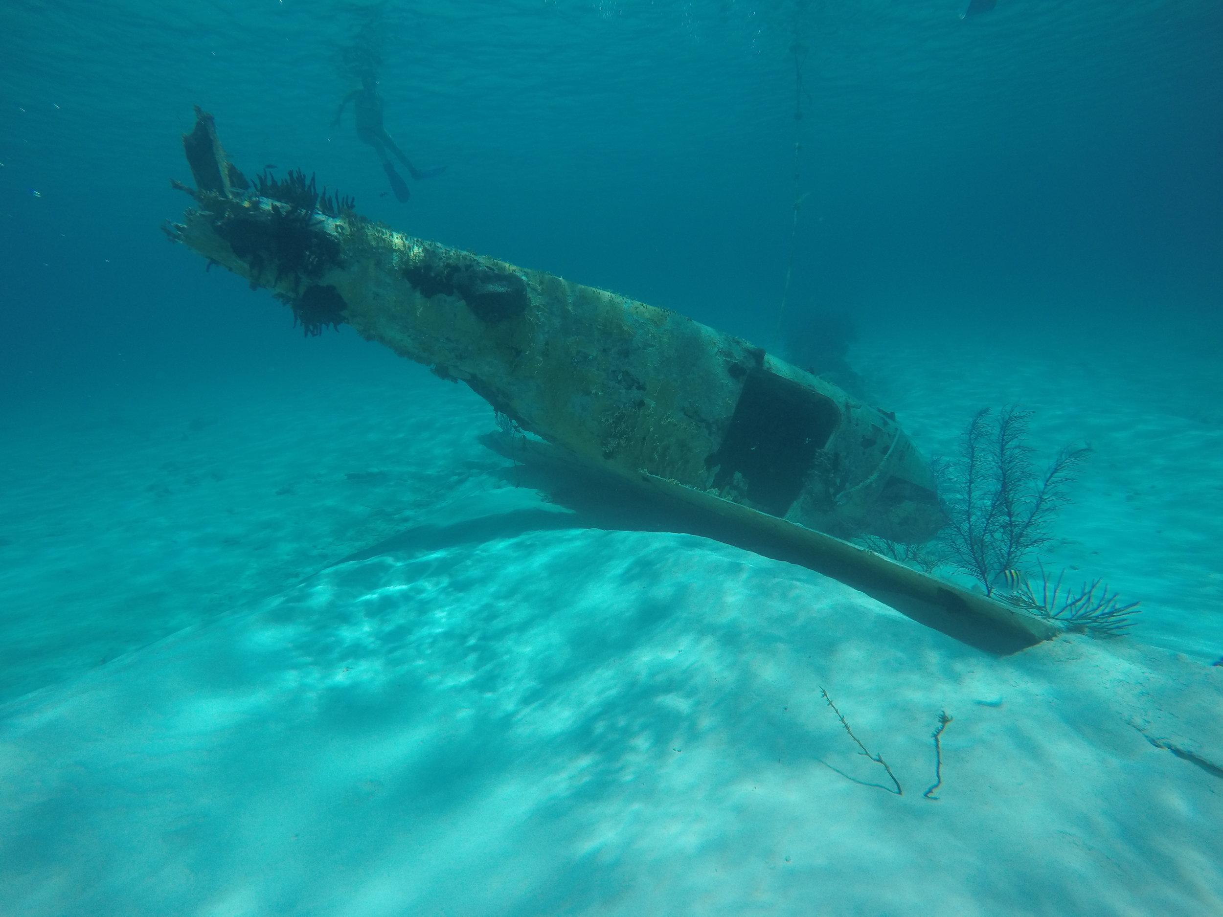 Cartel Plane Wreck - Little Halls Pond Cay 2015