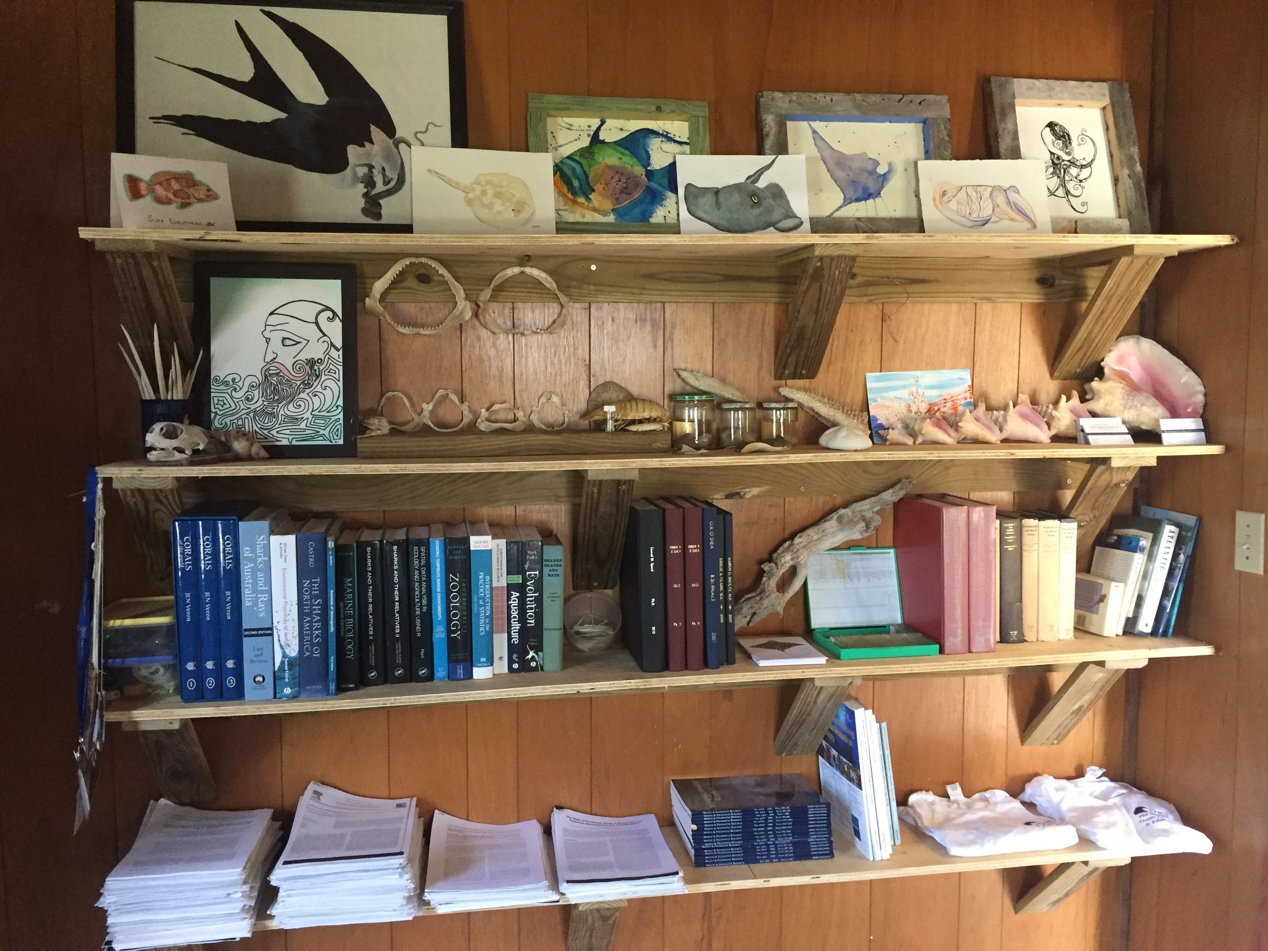 CORE's small, yet informative science library